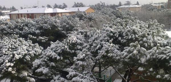 8-dicembre-2012-Imola.jpg