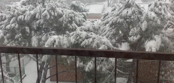 Imola-23-febbraio-2013..jpg